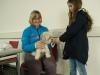 1. Hilfe Kurs für Hundehalter