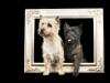 Fotoshooting mit Nicole Hollenstein