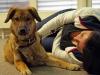 1. Hilfe Kurs für Hundehalter mit Frau Dr. med. vet. Eva Bauer